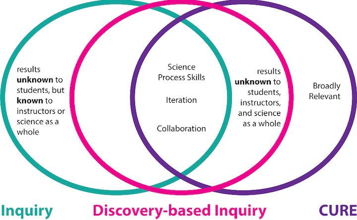 Inquiry-based Curriculum