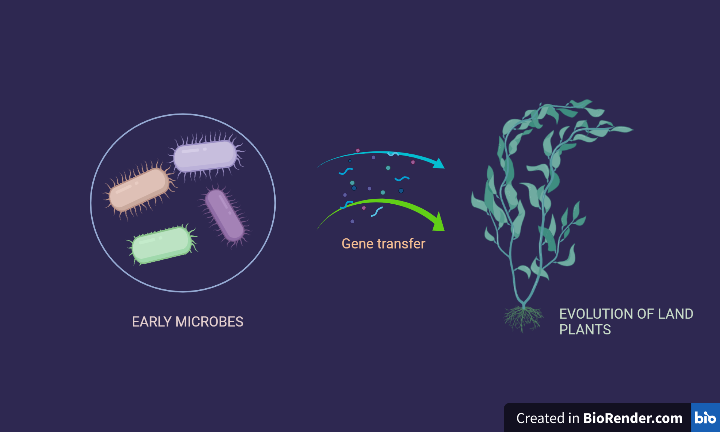 Archaea Plants