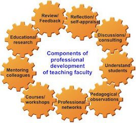 Components for professional development for faculty