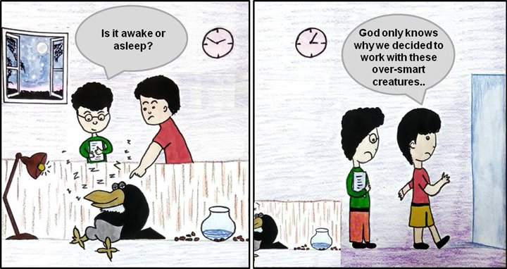 Cartoon on crows and sleep