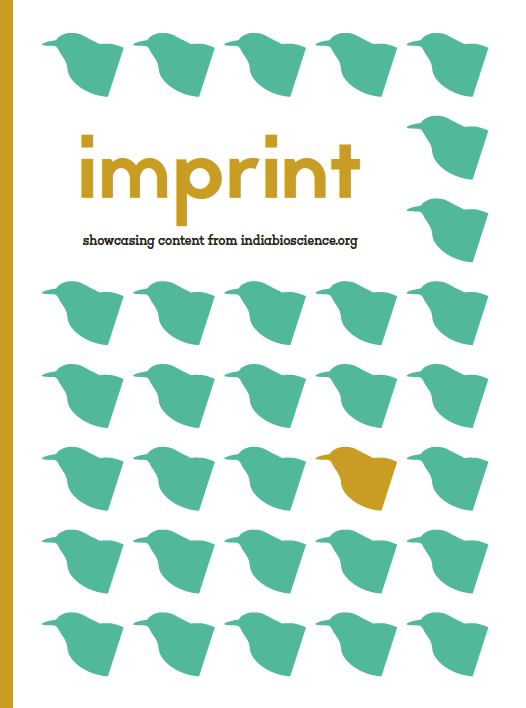 Imprint (Issue 1)