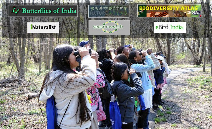 Birdwatching trips could be inculcated within the curriculum