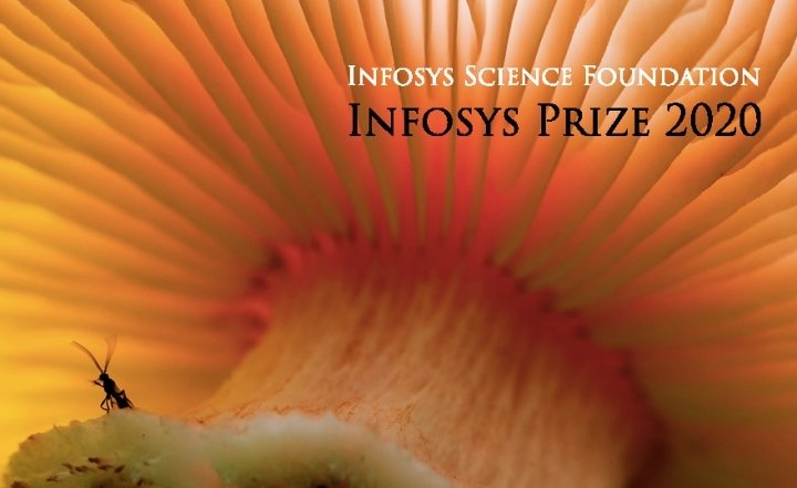 Pages from prize 2020 interactive