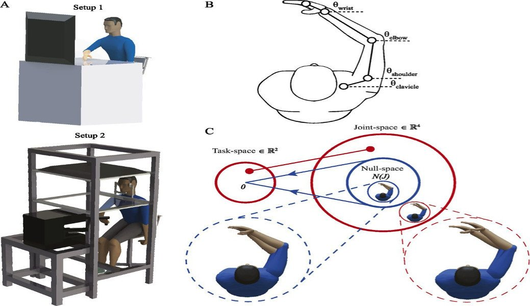 The experimental setup authors used to measure redundancy in arm movements of the subjects