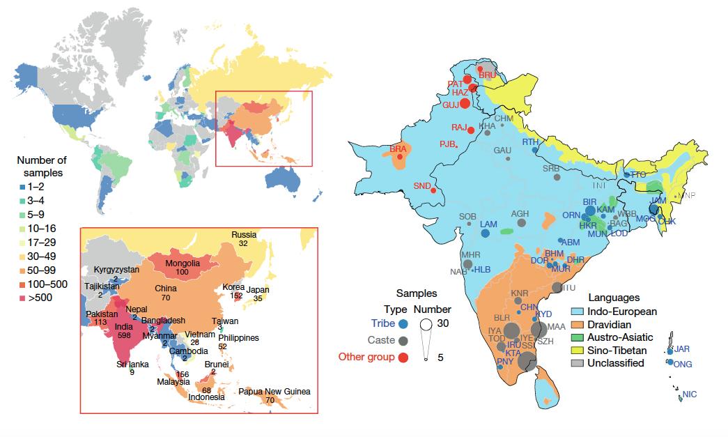 Sample Distribution - Genome Asia