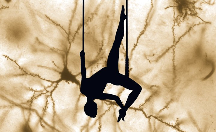 Shobha Anilkumar - Juggling science and life