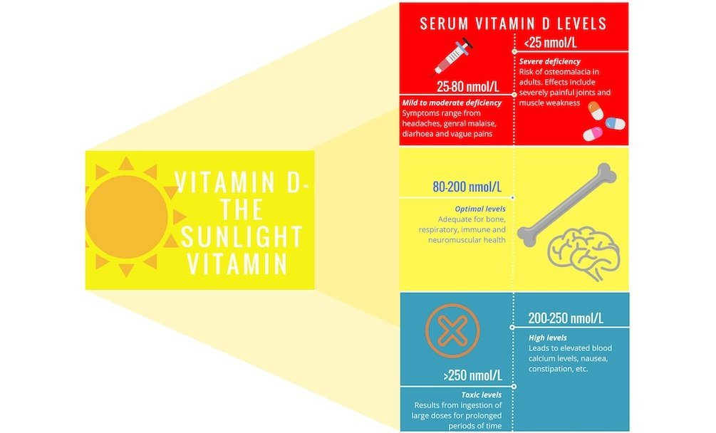Getting to know the sunlight vitamin