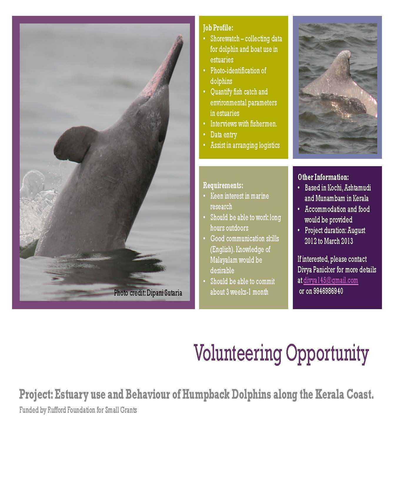 Volunteering-opportunity-Kochi-Low.jpg#a
