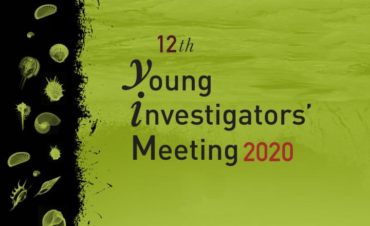 YIM2020 Banner