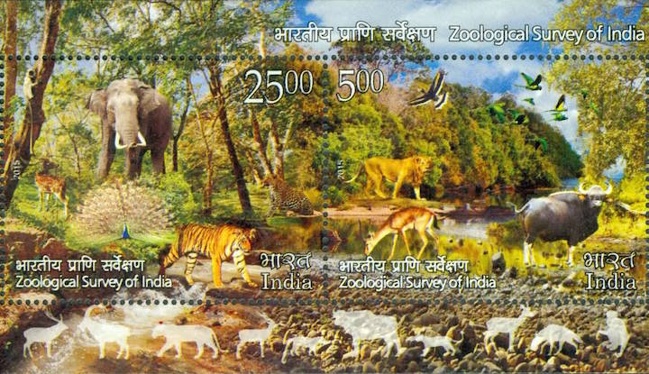 Commemorative stamp celebrating the centenary of ZSI