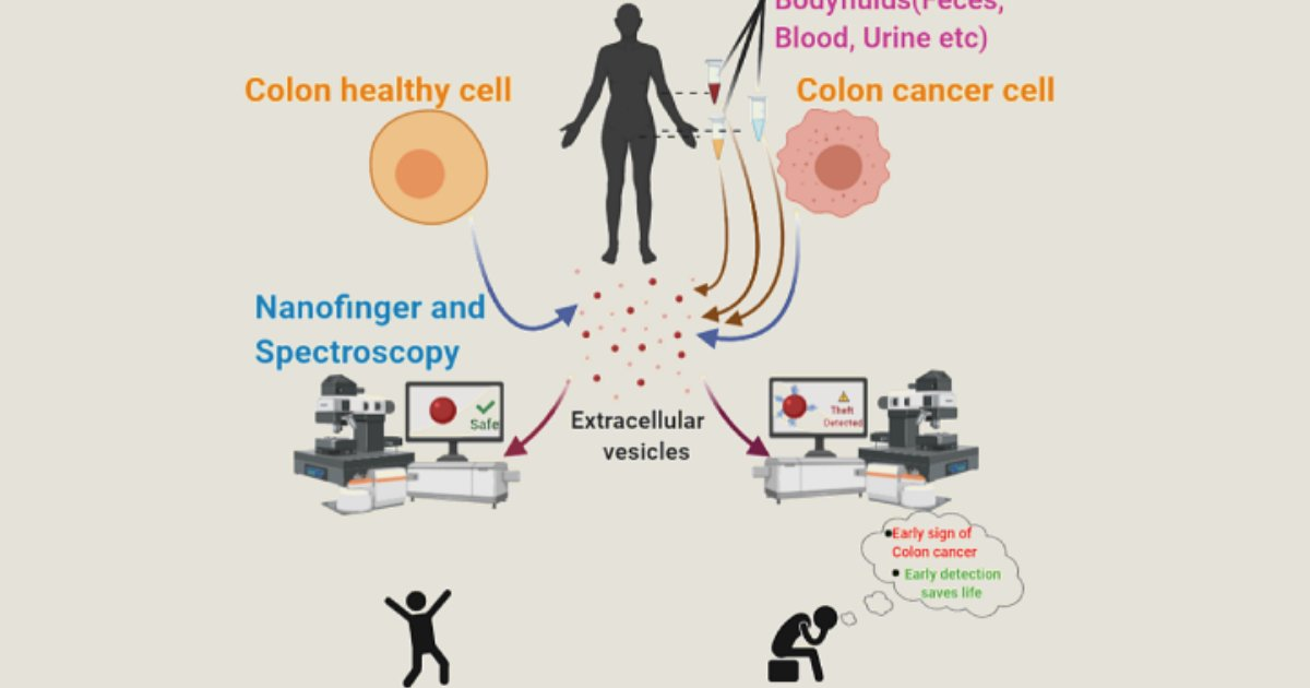 A Nanosized Tool To Non Invasively Detect Cancer Cells Indiabioscience