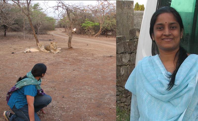 Meena Venkataraman at the Gir forest in Gujarat