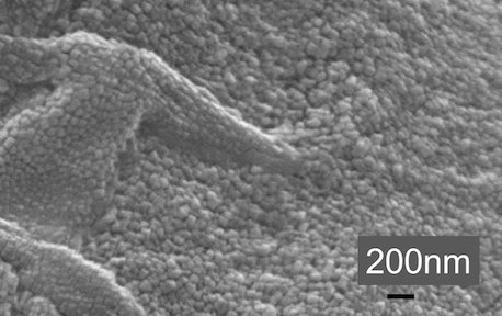 SEM images of silver nanopartciles coated with chitosan