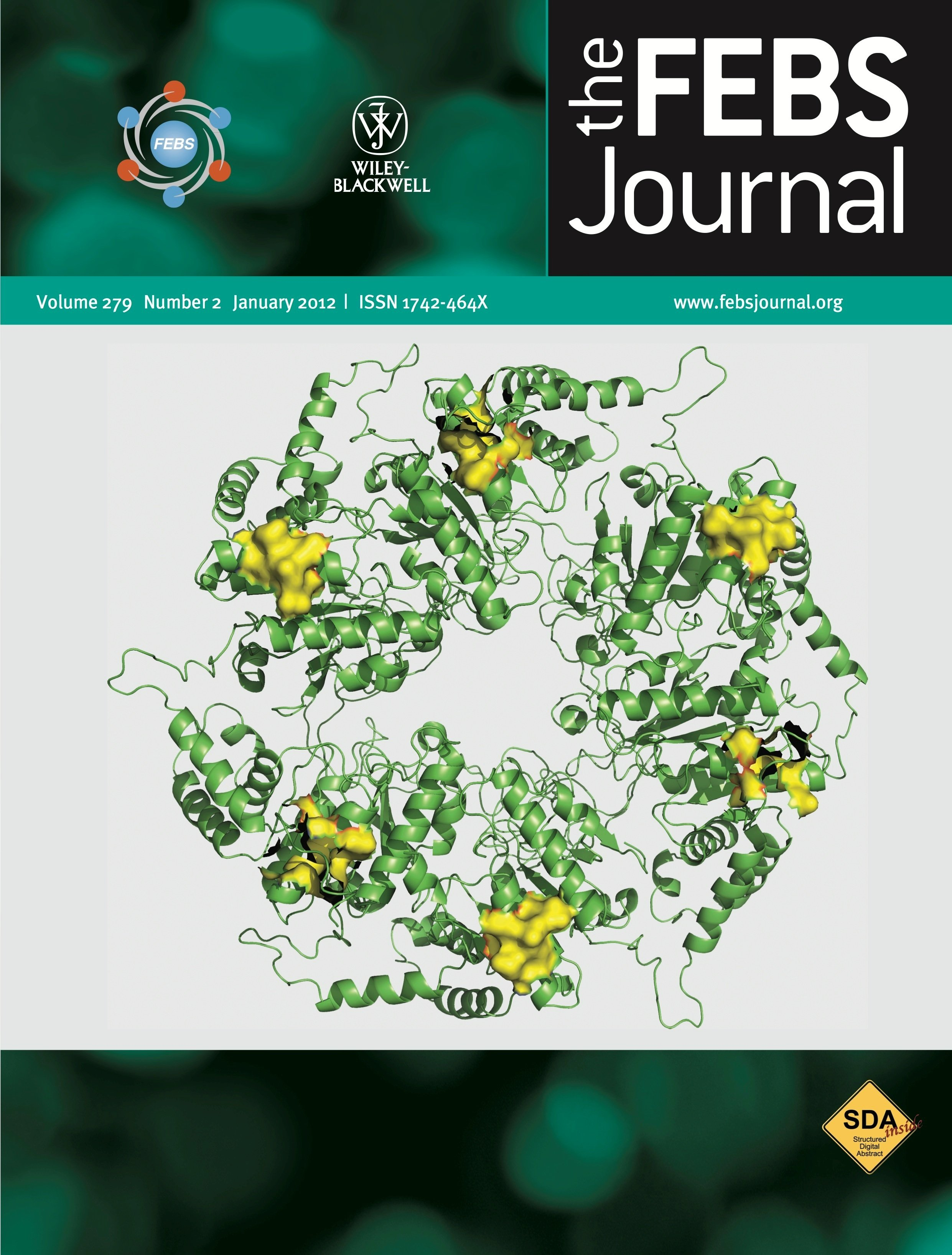 Suman Dhar's work on the cover of the FEBS journal
