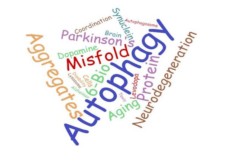 Wordcloud of key terms in autophagy and Parkinson's disease