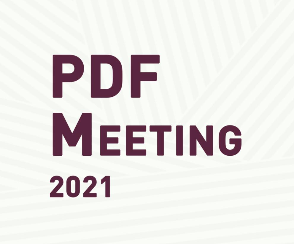 PDF Meeting 2021